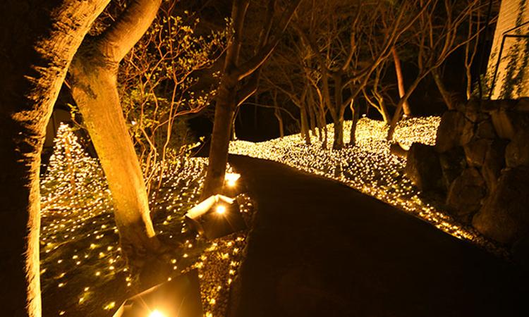 【日動工業】LEDフラットライトが結婚式場への納入実績を公開の画像