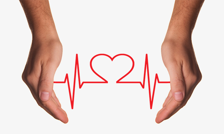 【TDK】磁気センサによる心臓活動のリアルタイムモニタリングを世界で初めて成功の画像