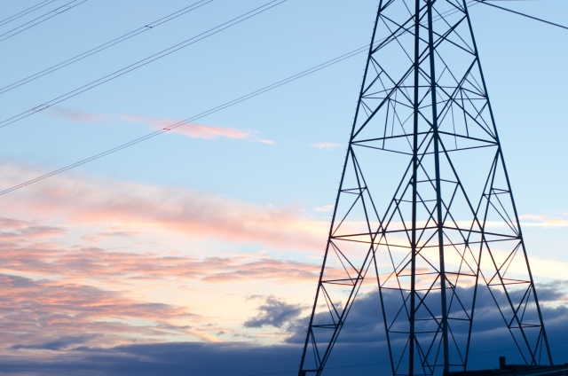 エコ電線、品不足懸念もの画像
