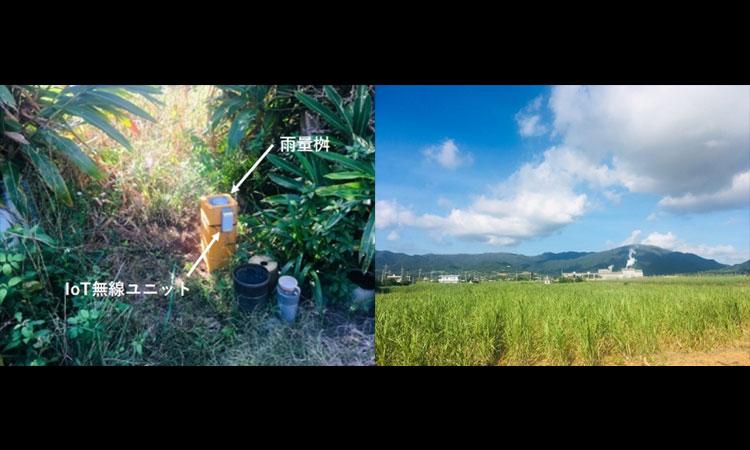 【オプテックス株式会社】「IoT無線ユニット」がシステムフォレストの農業分野向け雨量データ収集・可視化事業に採用の画像