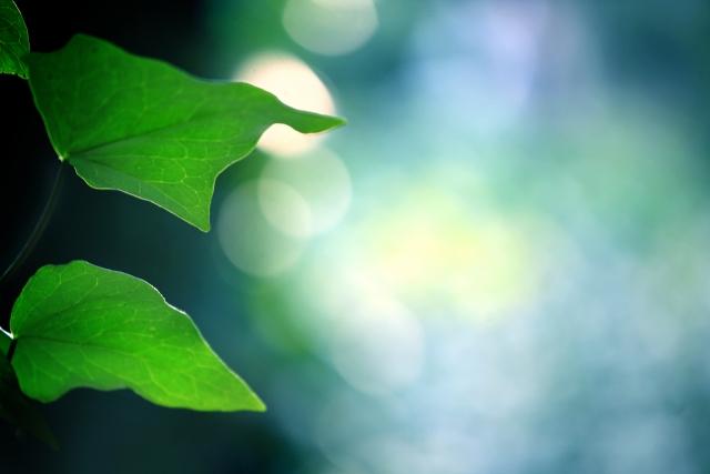自然エネルギー財団が提言「2030年エネルギーミックスへの提案(第1版)—自然エネルギーを基盤とする日本へ—」の画像